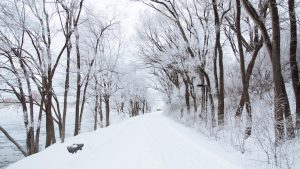 Winter pathway covered in snow image NHS Bristol marketing agency